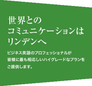 ホームゴルフネット2号型 交換用ネット き オンライン/同梱:バンプ ホームゴルフネット2号型セット交換用ネット。